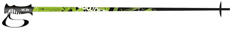 Salomon Arctic Skiing Pole
