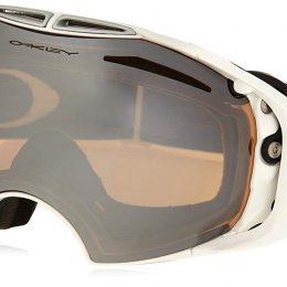 7 Best Oakley Ski Goggles